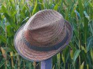 Maislabyrinth bis Ende Oktober geöffnet!